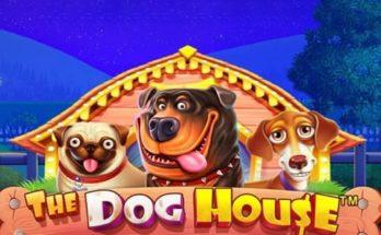 หาเงินใช้ด้วยเกมสล็อต The Dog House